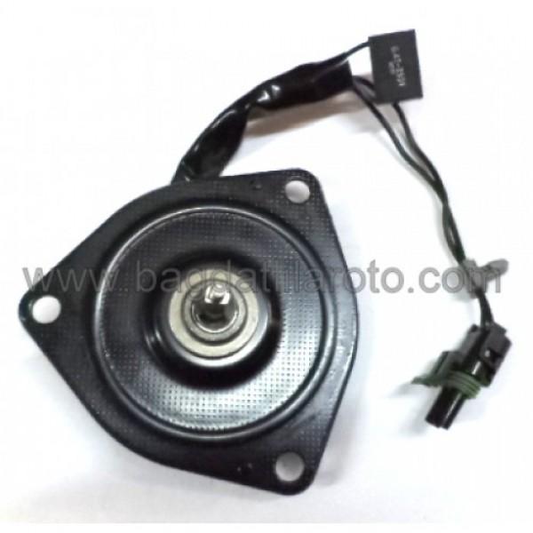 Fan motoru 12V 5050080 356 90 DELCO USA